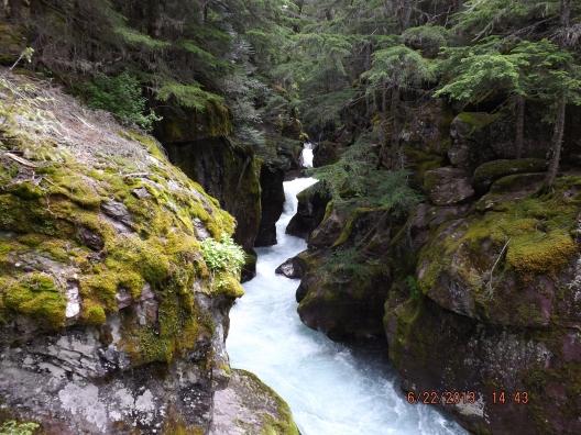 Avalanche Lake Trail, Glacier National Park