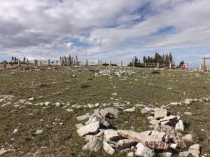 Medicine Wheel (Wyoming)
