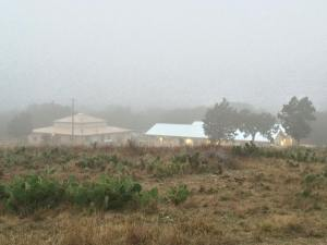 U BAR U Retreat Center - in the fog