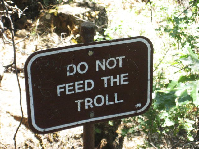 Do Not Feed the Troll